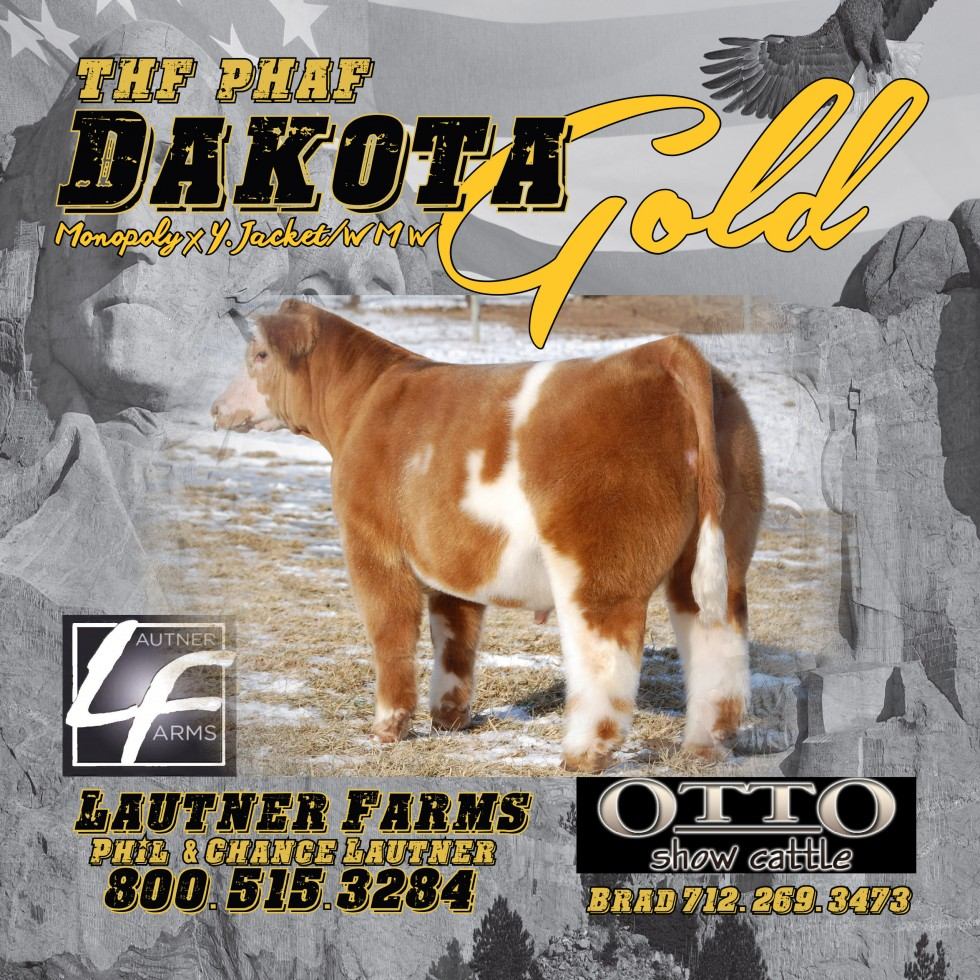 Dakota Gold Iowa Beef Expo Banner 2016 PDF
