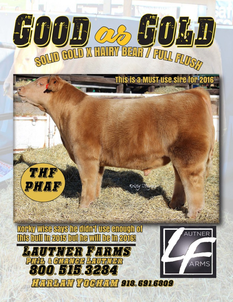 Good As Gold NLE March 2016 PDF