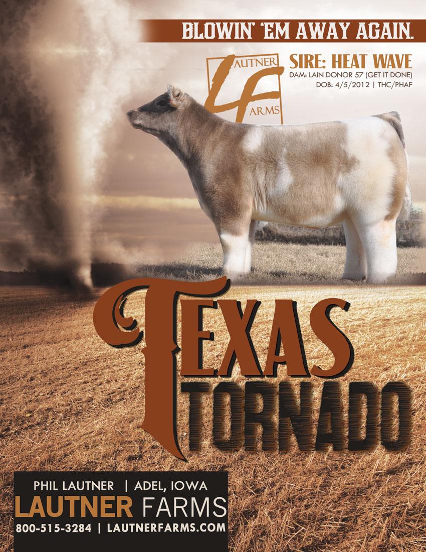 TexasTornado