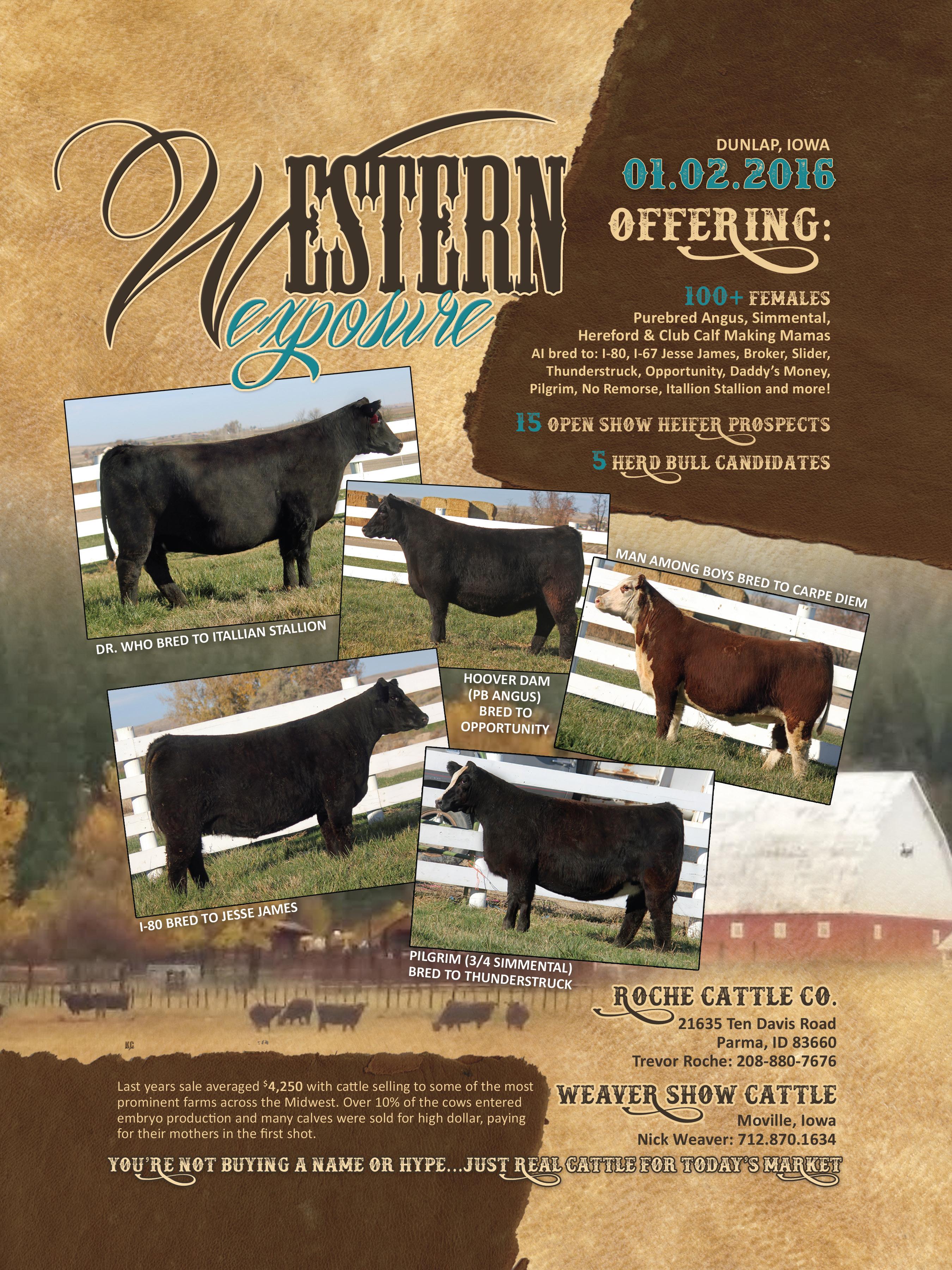 Western Exposure