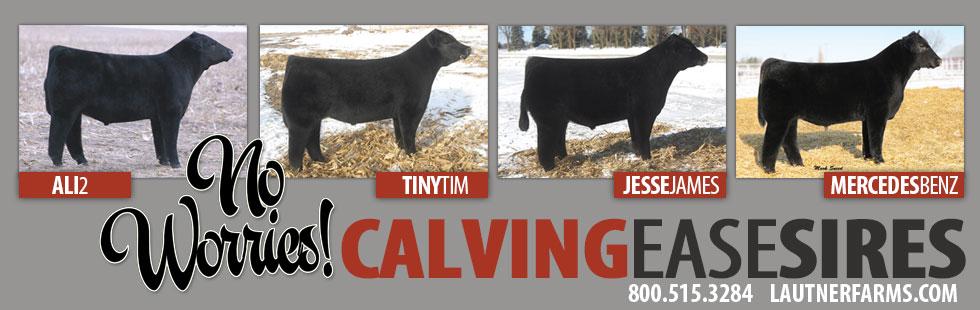 calvingease