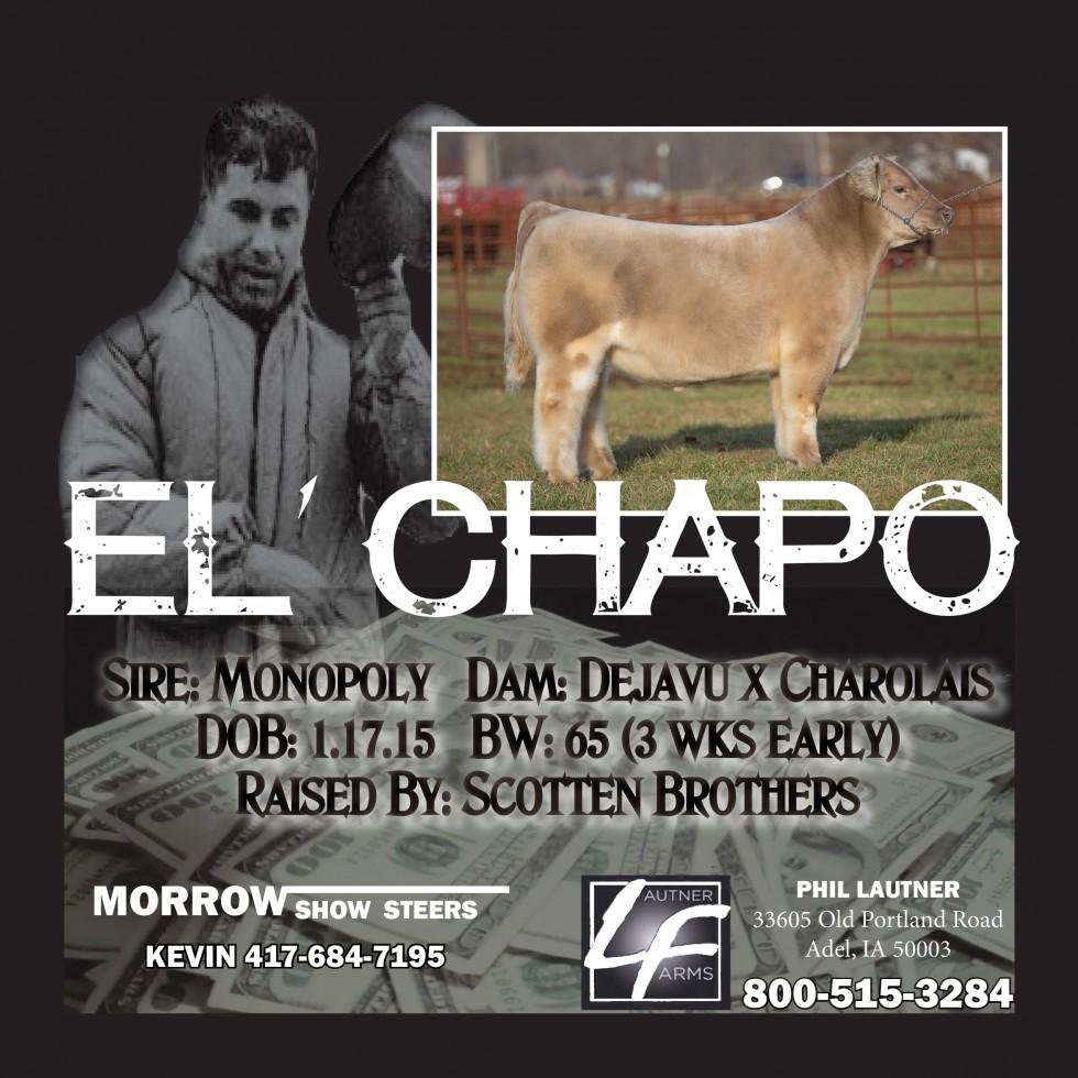 eL CHAPO-2