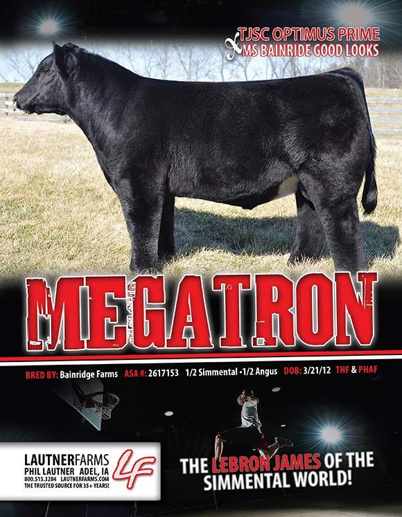 megatron_blog