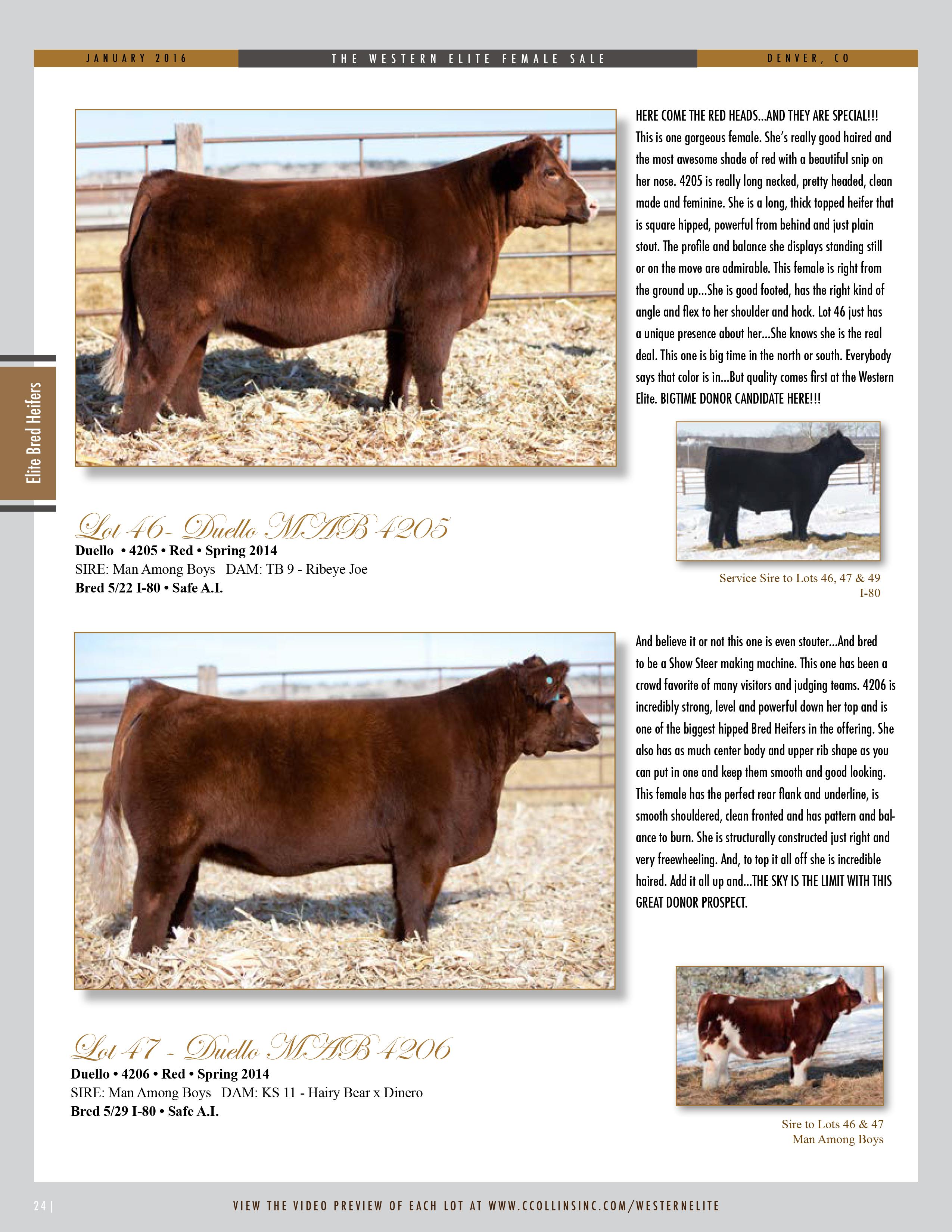 2016-Western-Elite-Catalog_ONLINE-NEW-24
