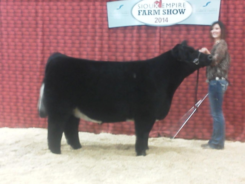 3rd-overall-steer