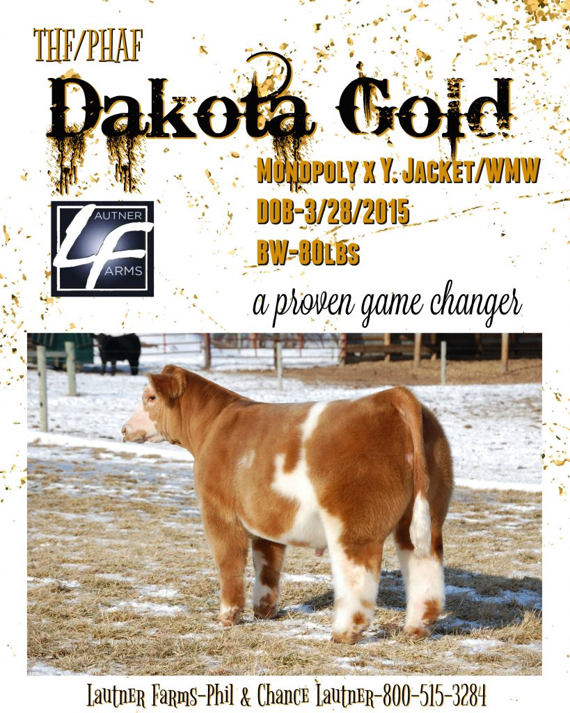 dakota-gold-ad