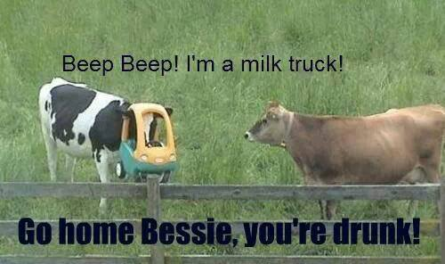 Go-home-Bessie-youre-drunk