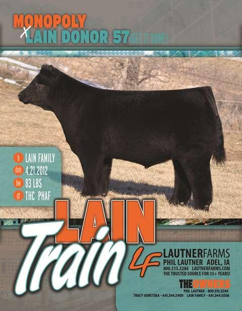 Lain Train Web