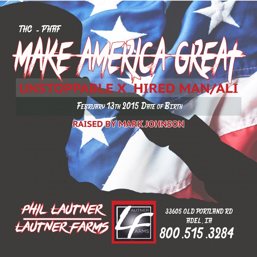 Make America Great banner 1-2 PDF (1)