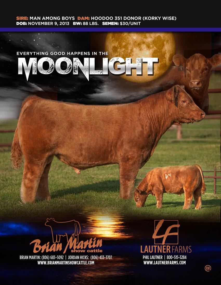 Moonlight102114-LR