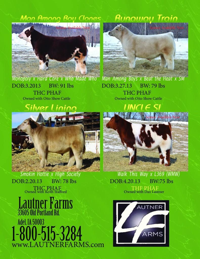 NLE_march_2013_pg_2_new_bulls_PDF