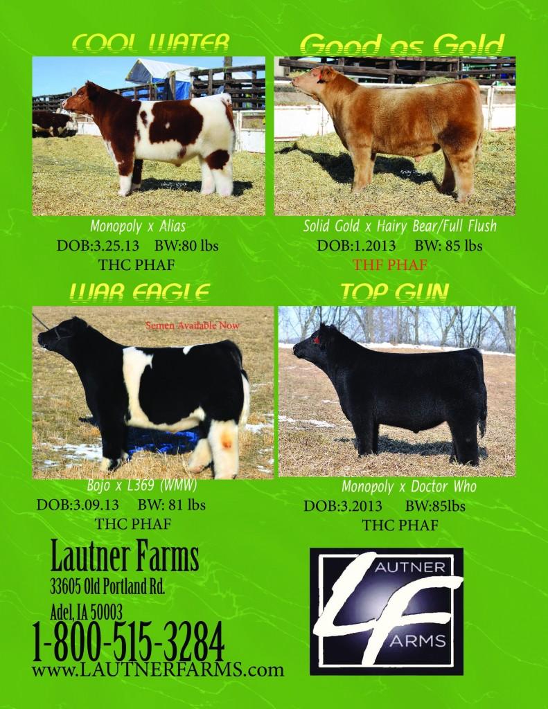 NLE_march_2013_pg_3_new_bulls_PDF