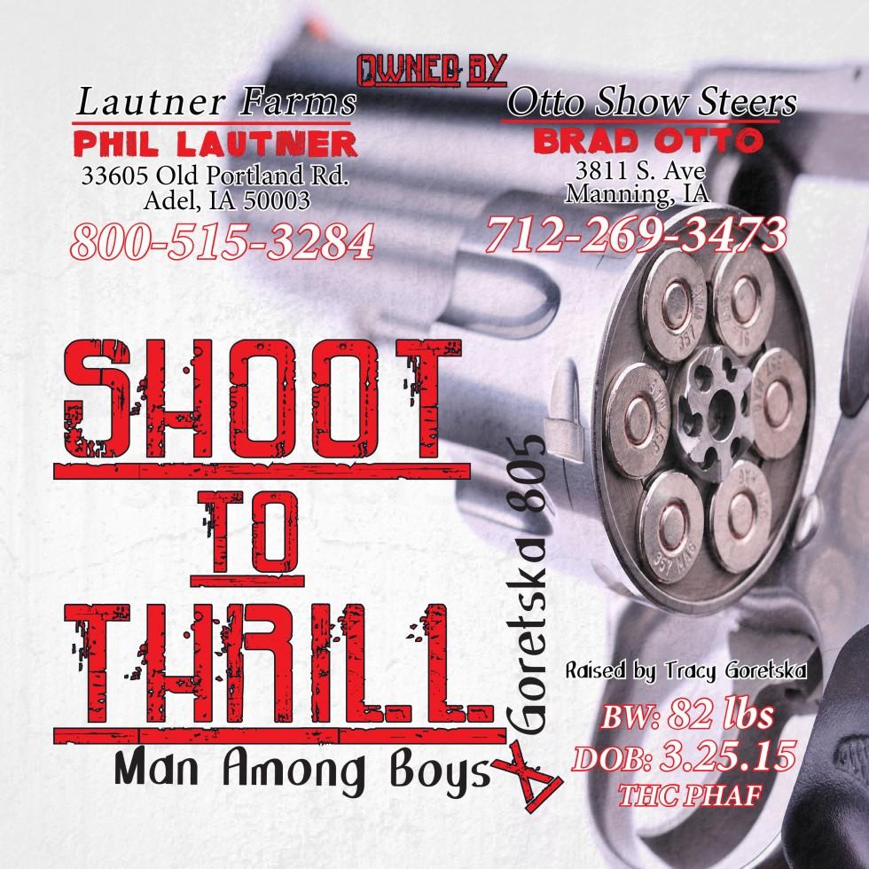 Shoot to Thrill 2-gun PDF