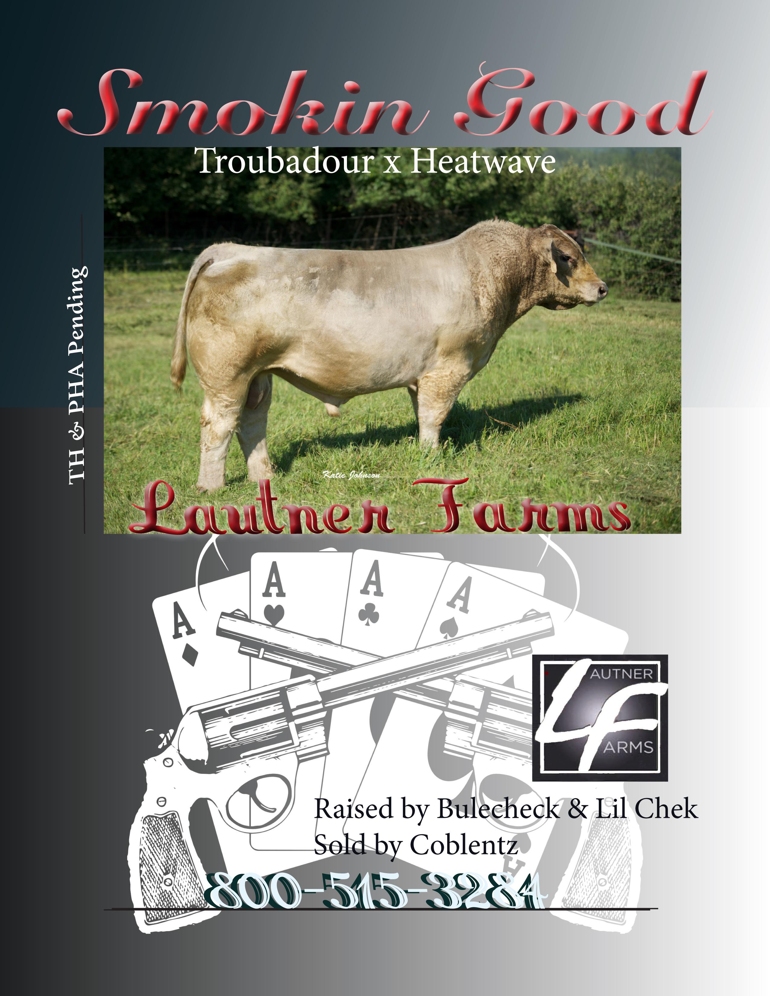 Smokin Good PDF with correct breeder