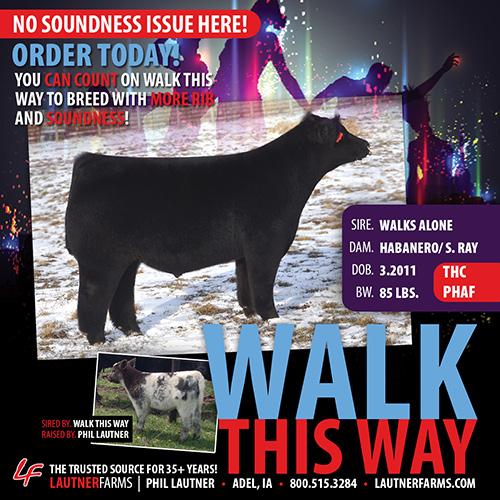 WalkThisWay_blog