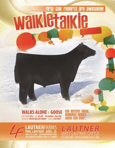 Walkie Talkie web