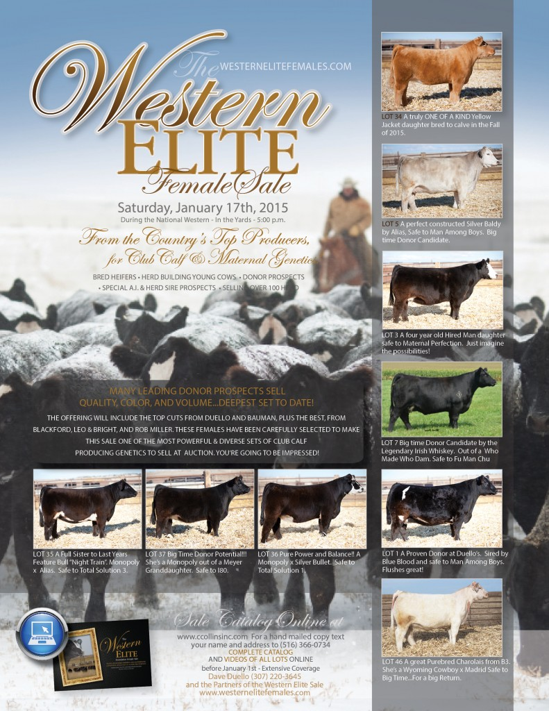 Western Elite Jan 2015 Ad Proof_Showtimes_Show Circuit  FINAL PROOF