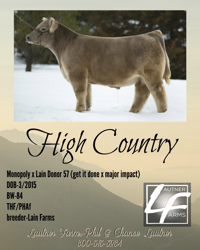 high country ad