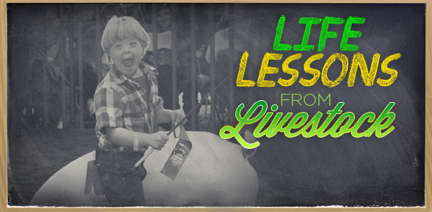 lifelessons-header4