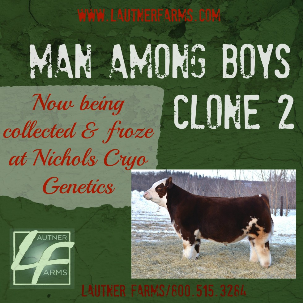 mab clone2 ad