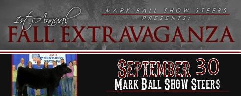 markball