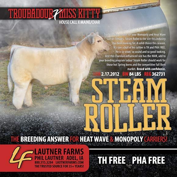steamroller_blog
