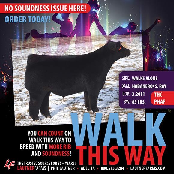 walkthisway_blog1 (1)